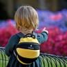 Παιδικό σακίδιο πλάτης LittleLife μέλισσα